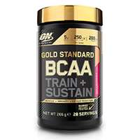 OPTIMUM NUTRITION ON GS BCAA Train & Sustain Pêche - Passion 266 g