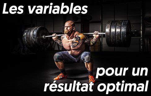 Les vraies variables qu'il faut considérer afin d'obtenir des résultats au gym