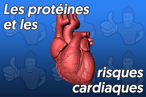 risques cardiovasculaires liés aux protéines