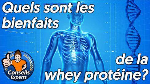 Quels sont les bienfaits de la whey protéine?